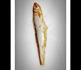 青川淺 寵物零食 我愛一條魚3 寵物零食 貓零食 狗零食 2